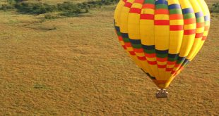 Balloon Safaris