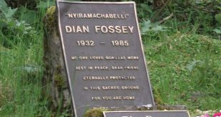 Dian Fossey Grave Hike