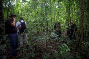 Budongo Forest Kaniyo Pabidi