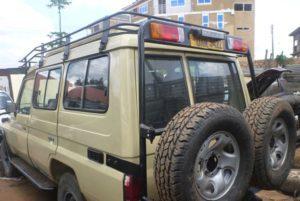 Best Time to see Gorillas in Rwanda and Uganda