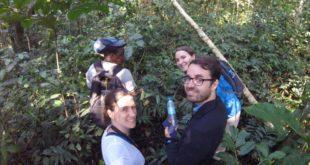 3 Day Gorilla Trekking