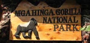 Mgahinga Park