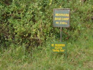 Mt. Muhabura Hike