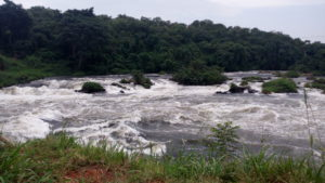 2 Days Murchison Falls National park