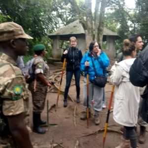 Uganda Christmas Package in Bwindi Forest
